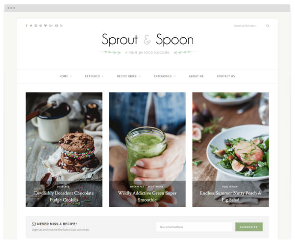 Sprout & Spoon  10+ Best Grocery and Food Store WordPress Themes For Farm Producers & Traders image 9