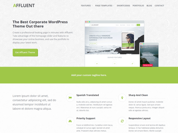 Affluent  17 Best Free WordPress Themes for Business Consultancy 2021 Affluent1