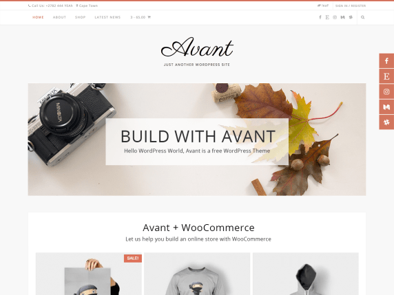 17 Best Free WordPress Themes for Business Consultancy 2021 Avant1