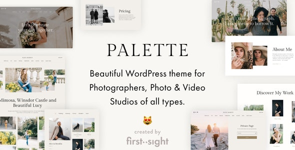 Palette  15 Best Multipurpose WordPress Themes To Save You Big For Future Projects Palette1