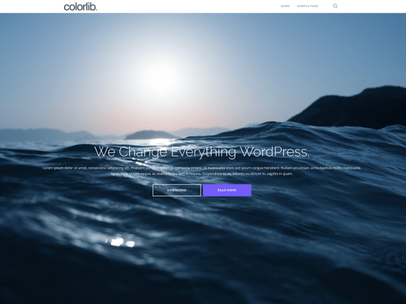 Shapely   17 Best Free WordPress Themes for Business Consultancy 2021 Shapely1