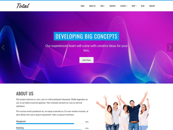 Total  17 Best Free WordPress Themes for Business Consultancy 2021 Total1